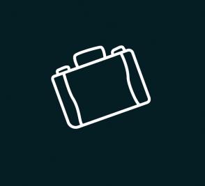 מזוודה 2